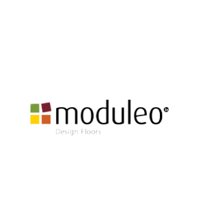 moduleo-removebg-preview